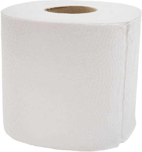 Toiletpapier recycled 2-laags (10x4)